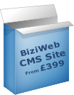 BiziWeb